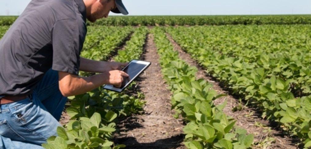 Améliorer la production de votre ferme avec l'agriculture numérique